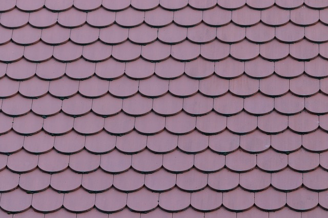 house roof repairs Tauranga