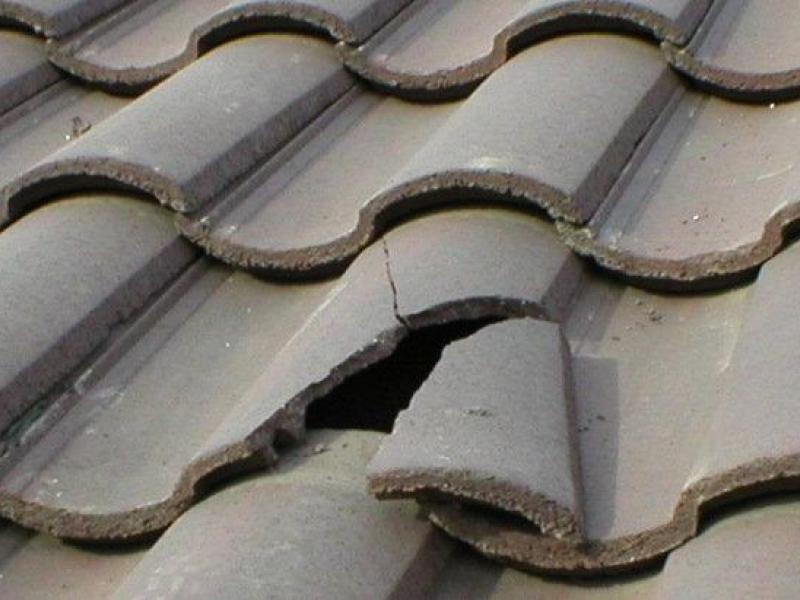 roofing contractors Tauranga