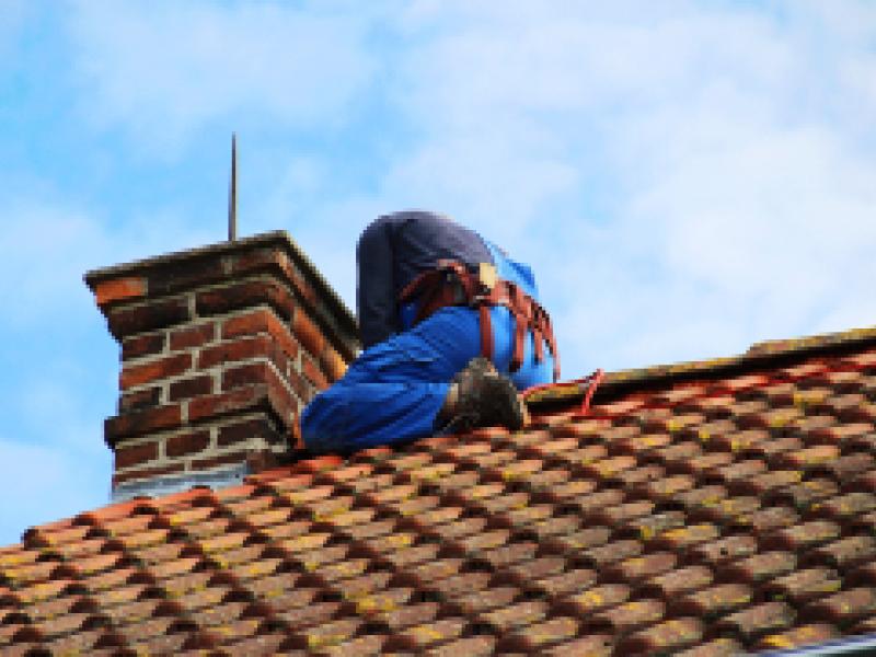 tauranga roof replacement